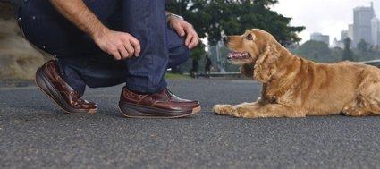 Joya se presenta como el calzado más blando del mundo.